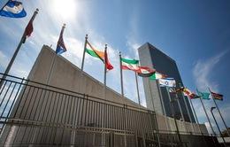 Đại hội đồng Liên hợp quốc nhất trí tổ chức thượng cờ Palestine