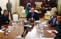 """Mỹ, châu Âu kêu gọi ngừng bắn """"vô điều kiện"""" ở Libya"""