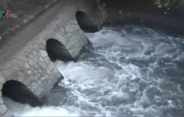 Phú Yên mở nước phục vụ sản xuất vụ Hè Thu