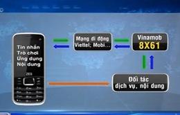 Ngừng cung cấp dịch vụ qua đầu số 8X61 lừa 2,6 tỷ đồng