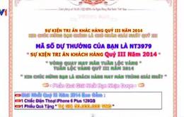 Lừa đảo trên Internet lan nhanh tại Việt Nam