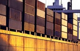 EU thông qua luật mới nhằm đơn giản hóa thủ tục hải quan