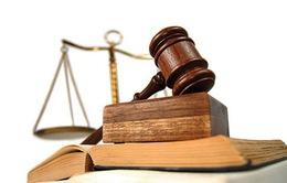 Lấy ý kiến nhân dân về dự thảo Bộ luật Hình sự (sửa đổi)