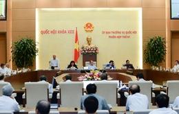 UBTV Quốc hội thảo luận về dự thảo Luật thuế xuất khẩu, thuế nhập khẩu (sửa đổi)