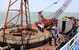 TP.HCM:Xã đảo Thạnh Anchính thức có lưới điện quốc gia