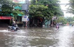 TT-Huế: Mưa lớn gây ngập lụt ở nhiều khu vực huyện Phú Lộc
