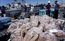 Mỹ và Italy phối hợp triệt phá đường dây buôn lậu ma túy lớn