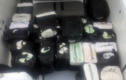 Hải quân Colombia thu giữ hơn 5 tấn cocain