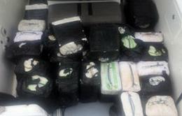 Mỹ: Thu giữ khoảng 14 tấn cocain trên biển