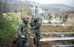Macedonia thiết lập hàng rào kiểm soát người di cư