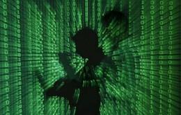 Mỹ: Mạng dữ liệu về 4 triệu lao động bị tin tặc tấn công