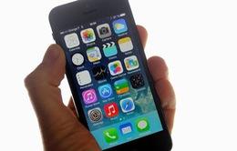 Màn hình smartphone cỡ 4,7 inch được dùng nhiều nhất