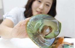 LG, Samsung cung cấp màn hình OLED cho Apple
