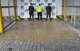 Colombia thu giữ hơn 3 tấn cocaine