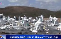 Panama tiêu hủy 13 tấn ma túy các loại