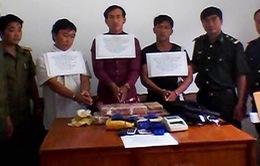 Phá chuyên án ma túy lớn từ Lào về Việt Nam