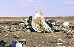 Máy bay Nga gặp nạn ở Ai Cập không chịu tác động từ bên ngoài