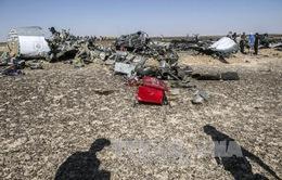Các hệ thống trên máy bay A321 hoạt động bình thường trước khi gặp nạn