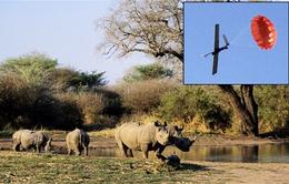 Máy bay không người lái chống săn bắt động vật trái phép