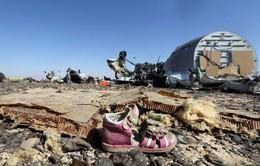 Loại bỏ khả năng máy bay Nga rơi ở Ai Cập do trúng tên lửa