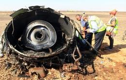 Nhiều khả năng máy bay Nga rơi ở Ai Cập do nổ bom
