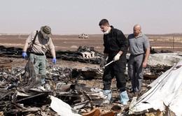 Nga chỉ trích các thông tin làm nhiễu loạn công tác điều tra vụ rơi máy bay