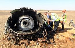 Nga kêu gọi thận trọng đưa ra nguyên nhân máy bay rơi tại Ai Cập