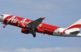 Bộ Giao thông Indonesia: AirAsia Indonesia vi phạm giấy phép bay