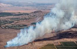 Thổ Nhĩ Kỳ báo cáo về vụ bắn hạ máy bay Su-24 của Nga