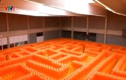 Lạc lối trong mê cung khổng lồ làm từ bóng bay tại Bỉ