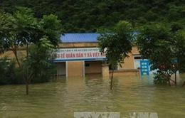 Hải Phòng: Kịp thời cứu 13 thuyền viên gặp nạn trên biển do mưa lớn