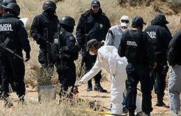 Mexico giải cứu 130 người di cư bị bắt cóc