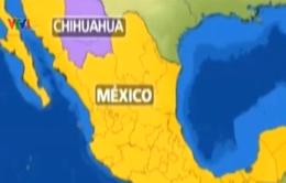 5 trẻ em Mexico bị bắt với cáo buộc sát hại bé trai 6 tuổi