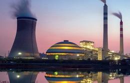 Hậu thỏa thuận khí hậu Paris: Năng lượng sạch lên ngôi
