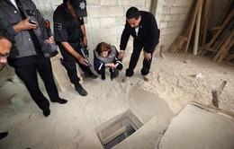 Mexico tạm giam 22 nhân viên nhà tù liên quan vụ vượt ngục