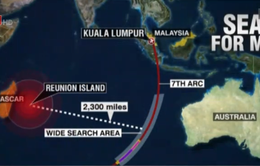 Tìm thấy mảnh vỡ thứ 2 nghi là của MH370 trên đảo Reunion
