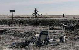 Tìm thấy mảnh vỡ nghi của tên lửa BUK tại miền Đông Ukraine