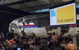 Nhóm điều tra vụ máy bay MH17 xem xét thành lập toà án độc lập
