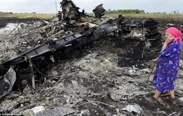 Liên Hợp Quốc bỏ phiếu dự thảo nghị quyết về vụ rơi máy bay MH17