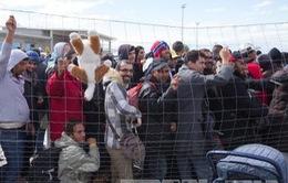 Hungary lập tòa án di động xét xử người vượt biên trái phép