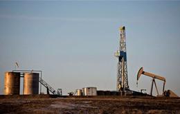 Thêm 41 giàn khoan dầu khí ở Mỹ ngừng hoạt động