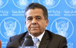 Libya kêu gọi các nước Arab can thiệp quân sự