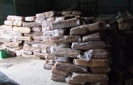 Bắt vụ vận chuyển20 tấn mủ cao su nhập lậu