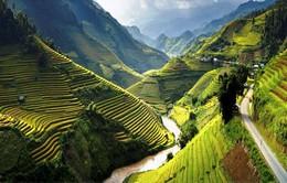Cơ hội cho ngành du lịch Việt Nam từ việc miễn thị thực