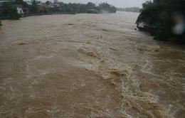 Mưa lớn gây nhiều thiệt hại về người và tài sản tại Nam Trung Bộ