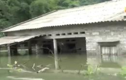 25 người thiệt mạng vì mưa lũ bất thường ở Bắc, Bắc Trung Bộ