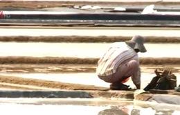 Diêm dân lao đao vì giá muối giảm mạnh