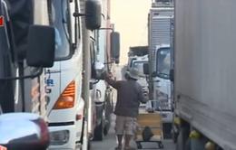 Rợn người cảnh mưu sinh trên Quốc lộ 1A