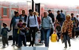 Mỹ sẵn sàng tiếp nhận 10.000 người tị nạn Syria