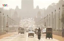 Ấn Độ: Nắng nóng lịch sử, hơn 700 người thiệt mạng